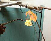 Repairman Welding Copper Pipes