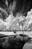Park Bridge In Infrared