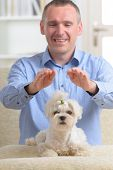 Man doing Reiki therapy for a dog, a kind of energy medicine.