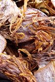close up image of dried squid