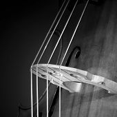 stock photo of double-bass  - Close - JPG