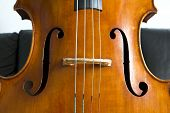 stock photo of double-bass  - Close-up of double bass wooden musical instrument that is played with a bow
