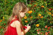 Little girl in red dress considers flower through magnifying glass.