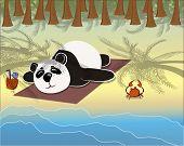 panda lying on the beach