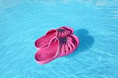 Beach Slippers Swimming On Water Surface In Pool