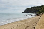 Shanklin beach Isle of Wight England UK, popular tourist and holiday location east coast