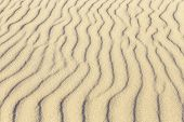 pic of dauphin  - waves at the sandy beach in harmonic pattern - JPG
