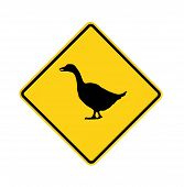 Road Sign - Yellow - Goose