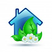 Ecological house with fresh green leafs and camomile