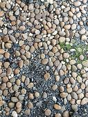 Stone And Pebbles