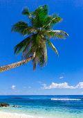 Heaven Coast Sea