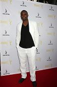 LOS ANGELES - AUG 12:  Darius McCrary at the Dynamic & Diverse:  A 66th Emmy Awards Celebration of Diversity Event at Television Academy on August 12, 2014 in North Hollywood, CA