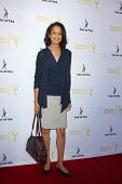 LOS ANGELES - AUG 12:  Anne-Marie Johnson at the Dynamic & Diverse:  A 66th Emmy Awards Celebration