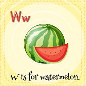 Illustration of an alphabet W is for watermelon