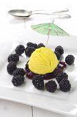 Lemon Ice Ball With Blackberries