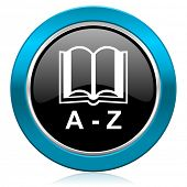 dictionary glossy icon
