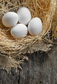 Eggs At Hay Nest