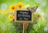 An image of a little chalkboard in the garden with the text happy birthday to you