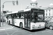Belgrade Bus