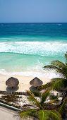 Palm umbrellas sea