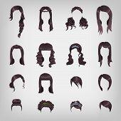 Assortment Of Female Brunette Hair