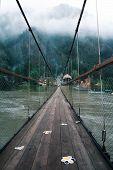 suspension bridge, bridge through the forest