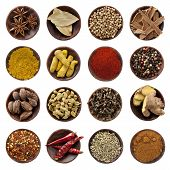 Spices Collection Xxxl