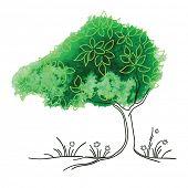 Vector watercolor tree - Season concept - Summer.