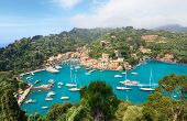 picture of yellow castle  - Aerial panorama of Portofino - JPG
