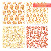 picture of orange blossom  - Painting set of seamless texture - JPG