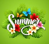 picture of tropical plants  - Vector illustration with tropical plants and flowers EPS 10 - JPG