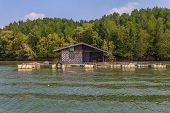 pic of floating  - Float fishing village on tropical river with trees on background in Krabi province of Thailand - JPG