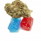 stock photo of marijuana  - Marijuana and Hard Candy Containing Medical Marijuana THC - JPG