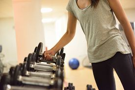 picture of shoulder muscle  - Gym woman strength training lifting dumbbell weights getting ready for exercise workout - JPG