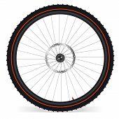 Bike Rad