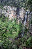 Springbrook cascadas 6