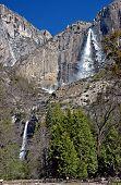 Falls At Yosemite In Spring