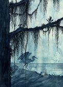 Heron In Swamp