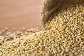 White Quinoa Grains
