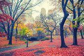 Central park at rainy morning, New York City, USA poster