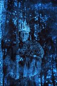 The king of the dead warriors in knightly armor stands in the night forest. Fantasy horror film. Hal poster