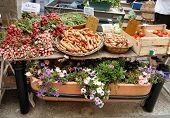 Gemüse stall