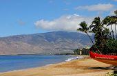 Outrigger Canoe On The Beach In Maui