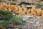 pic of dogon  - Ancient Dogon and Tellem houses on the Bandiagara escarpment in Mali with trees - JPG
