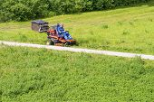 Mature Man Driving Grass Cutter In A Sunny Dgardener Driving A Riding Lawn Mower In A Gardenay.worke poster