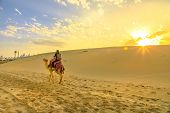 Desert Safari In Qatar. Traveler Man Ride A Camel On Sand Dunes Of Beach At Khor Al Udaid In Persian poster