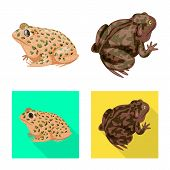 Isolated Object Of Wildlife And Bog Icon. Collection Of Wildlife And Reptile Stock Symbol For Web. poster