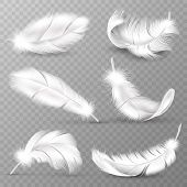 Realistic White Feathers. Birds Plumage, Falling Fluffy Twirled Feather, Flying Angel Wings Feathers poster