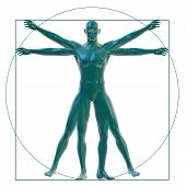 Vitruvian man on white