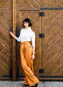 High Waisted Trousers. Woman Attractive Brunette Wear Fashionable Clothes. Femininity And Emphasize  poster